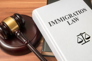 immigration case